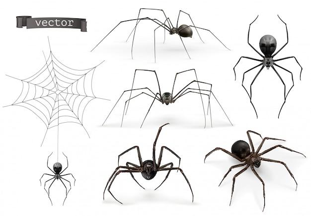 Les araignées. signe d'halloween, toile d'araignée