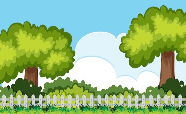 Arbre et bush derrière la scène de la clôture