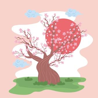 Arbre cerisier sakura