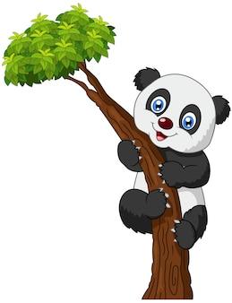 Arbre d'escalade mignon dessin animé panda
