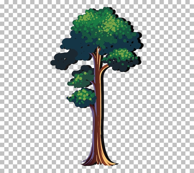 Un arbre isolé sur fond transparent