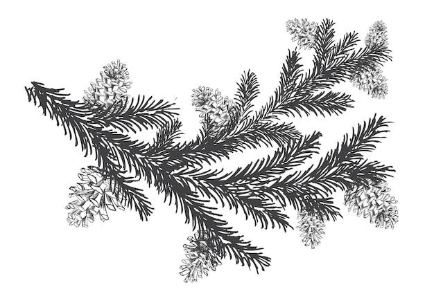 Arbre de noël et pins avec illustration dessinée à la main de cônes