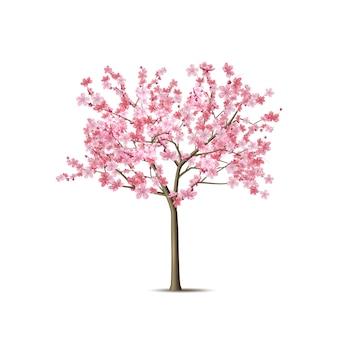 Arbre de sakura réaliste de vecteur avec pétale rose