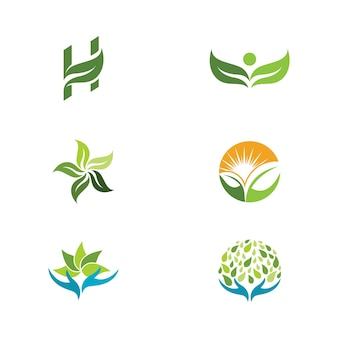 Arbre vert feuille écologie nature élément vecteur conception
