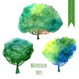 Arbres d'été. jeu de vecteur aquarelle d'arbres