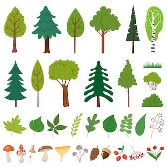 Arbres forestiers. arbre des bois, plantes de baies sauvages et champignons. ensemble d'éléments floraux des forêts