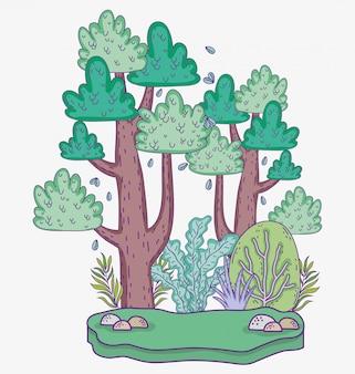 Arbres nature avec des plantes feuilles et des pierres