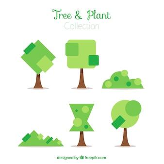 Les arbustes et les arbres de formes géométriques fond