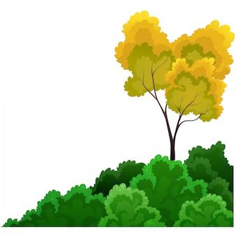 Arbustes et arbres