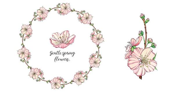 Arrangement de fleurs de printemps délicat de vecteur