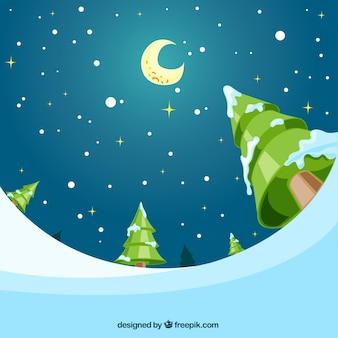 Arrière-plan de belle nuit étoilée avec des arbres enneigés