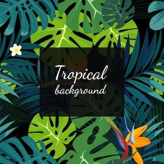 Arrière-plan coloré de fleurs, plantes et feuilles tropicales.