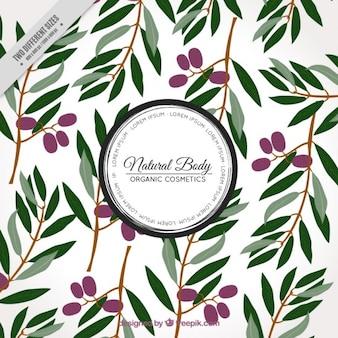 Arrière-plan décoratif des feuilles et des olives