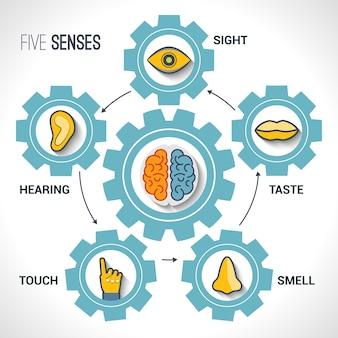 Arrière-plan avec des engrenages et des cinq sens