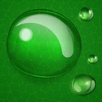 Arrière-plan avec une grande et plusieurs petites gouttes d'eau sur une feuille verte