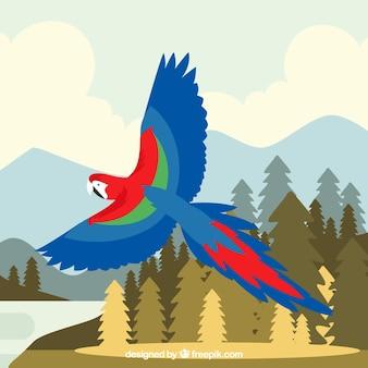 Arrière-plan de perroquet volant