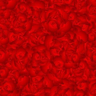 Arrière-plan transparent de fleur d'oeillet rouge