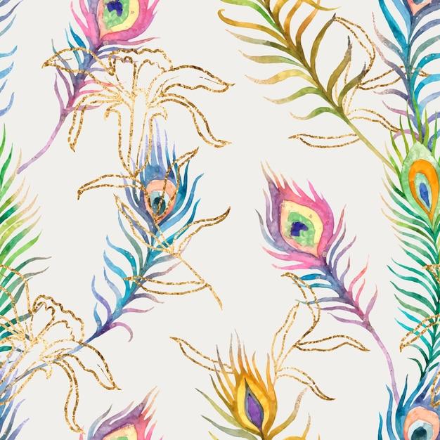 Arrière-plan transparent de plume de paon