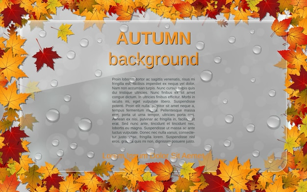 Arrière-plan vectoriel flou de style automne avec des feuilles colorées, un panneau d'affichage en verre et des gouttes d'eau