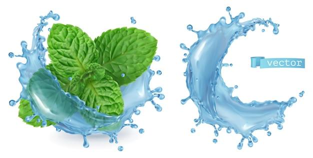 Arrosez d'eau et de menthe. vecteur réaliste 3d