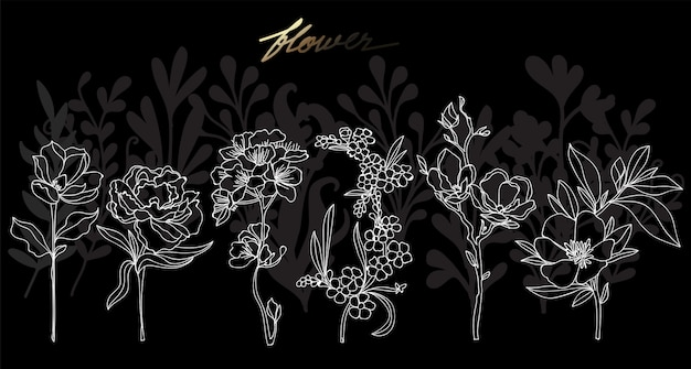 Art fleur main dessin et croquis en noir et blanc avec illustration art ligne isolée