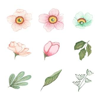 Art Floral Aquarelle à La Main Vecteur gratuit