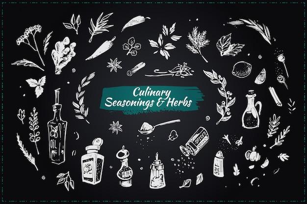 Assaisonnements et herbes culinaires. icônes dessinées à la main