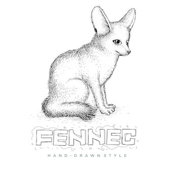 Assis fennec, illustration animale dessinée à la main