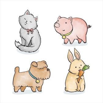 Assortiment de différents animaux de compagnie