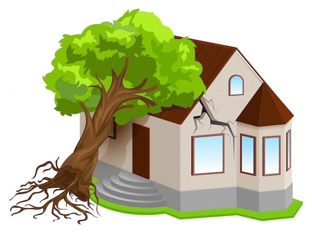 Assurance des biens contre les catastrophes naturelles. arbre tremblement de terre est tombé sur la maison