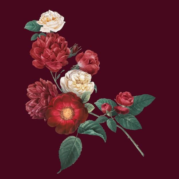 Autocollant dessiné à la main vintage de fleurs de roses de jardin rouges