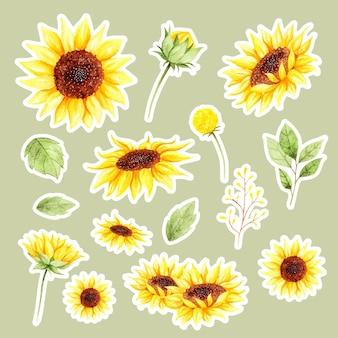 Autocollant de fleur de soleil aquarelle dessinés à la main