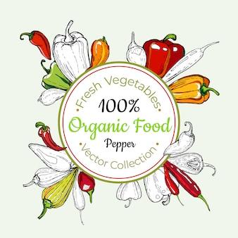 Autocollant de vecteur vintage épicerie légumes poivron, affiche, modèle d'étiquette. ligne de nourriture fraîche hipster illustration dessinée à la main.