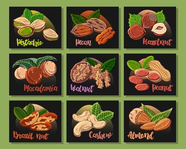 Autocollants: ensemble de différents types de noix.