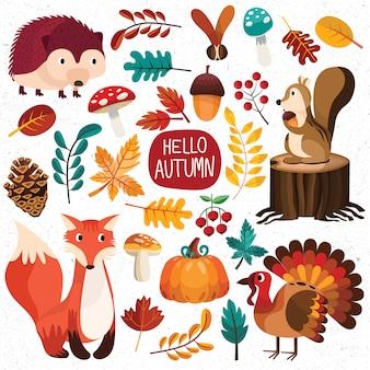 Automne automne saison feuille champignon bois forêt animaux faune chaud mignon écureuil renard citrouilles dinde érable pommes de pin collection cerise