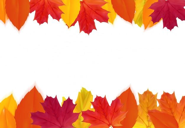 Automne brillant fond de feuilles naturelles. illustration vectorielle