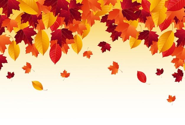 Automne avec chute des feuilles d'automne
