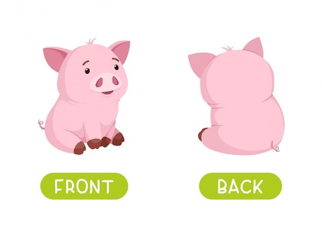 Avant et arrière. antonymes de vecteur et contraires. illustration de personnages de dessins animés