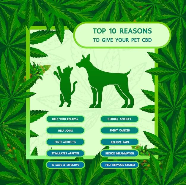 Avantages du cannabis pour l'illustration vectorielle de la santé des animaux de compagnie