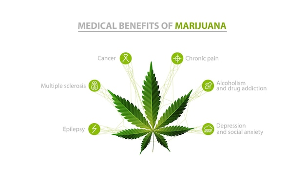 Avantages médicaux de la marijuana, informations blanches avec des icônes d'avantages et des feuilles vertes de cannabis