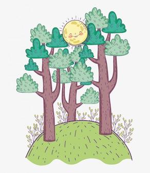 Aventure en forêt avec arbres naturels et soleil