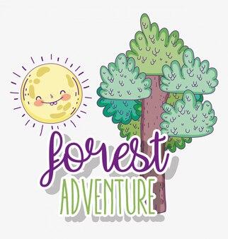 Aventure en forêt avec nature arbre et soleil