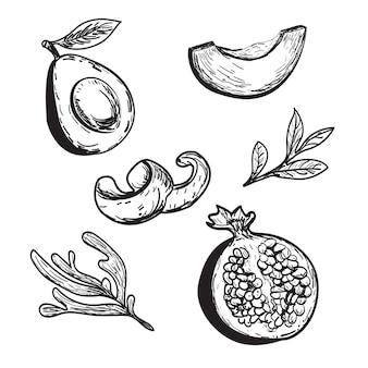 Avocat dessiné grenade écorce d'orange ensemble illustration de fruits conception d'emballage de jus