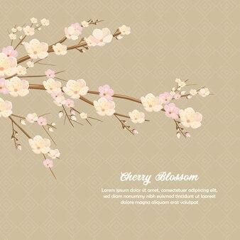 Backround d'invitation de fleur de printemps de fleur de cerisier