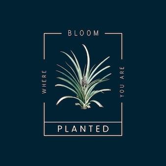Badge plante ananas