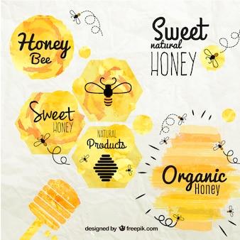 Badges de miel dans le style d'aquarelle