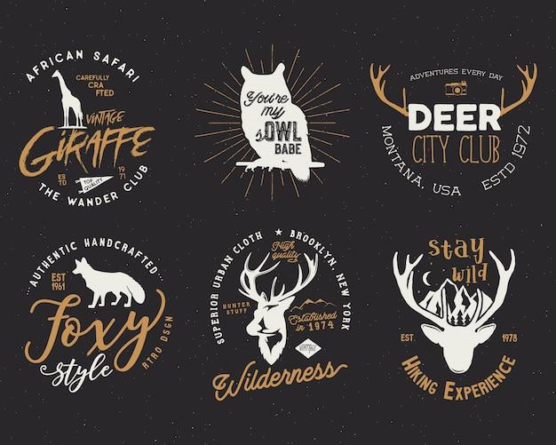 Badges rétro avec animaux sauvages