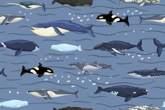 Baleines de modèle sans couture sur le bleu avec des vagues et le fond de tache. impression de personnages de dessins animés de l'océan dans un style scandinave pour les enfants. texture répétée avec des mammifères marins. concevoir à toutes fins utiles