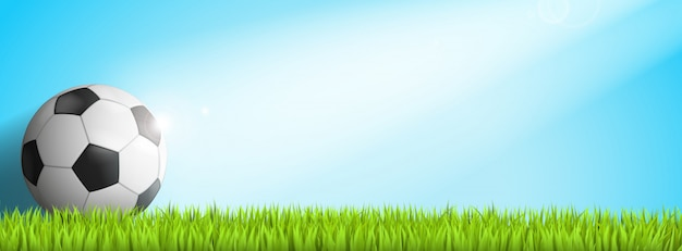 Ballon de foot dans l'herbe avec soleil