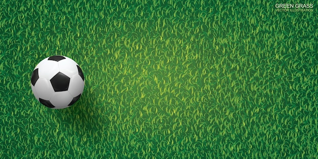 Ballon de foot sur fond d'herbe verte.